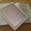 Mauvaise année pour la liseuse électronique